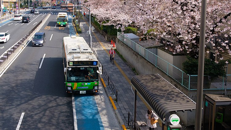csm_Buses-and-blossoms_3_2174aab027